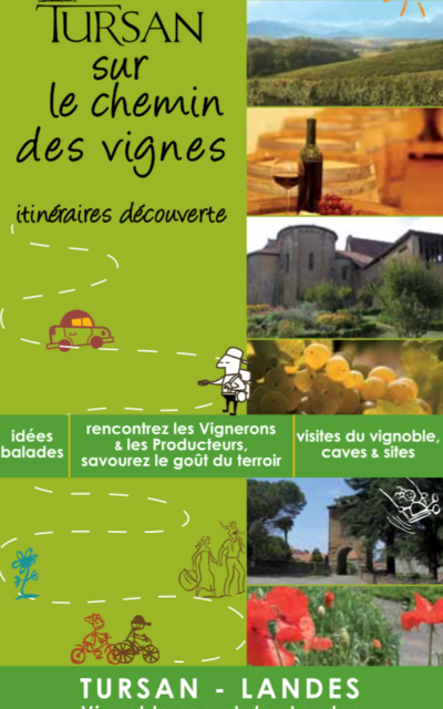 "The wine trail (""la route du vin"")"