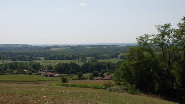 The Chalosse landscape
