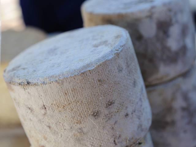 Fromage et produits laitiers