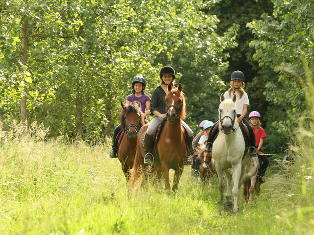 Equestrian clubs and centres