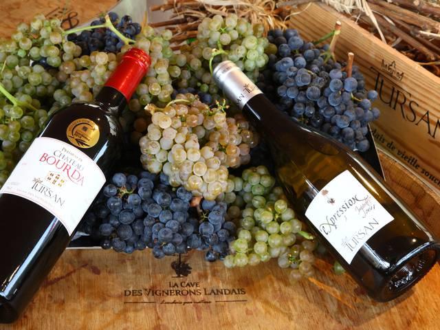 Vins du Tursan, Armagnac et Bières
