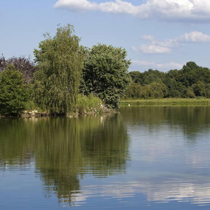Los lagos de Halco - Hagetmau