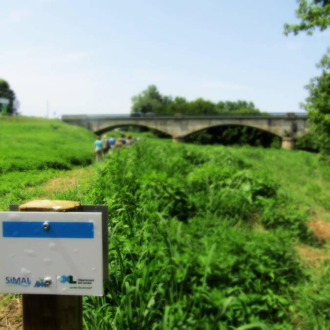 Le sentier de l'Adour Landais - Pont de Pontonx